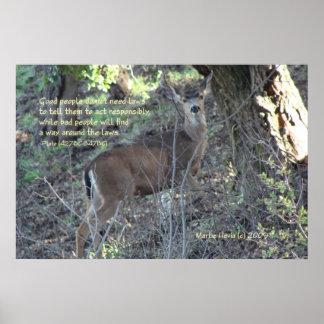 Palabras famosas: Leyes - ciervos - poster