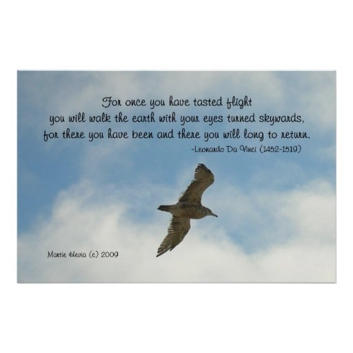 Palabras famosas: Vuelo - gaviota - poster