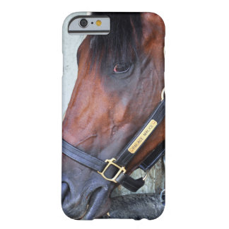 Palace Malice by Curlin Barely There iPhone 6 Case