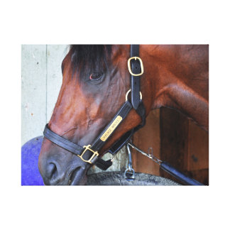 Palace Malice by Curlin Canvas Print