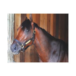 Palace Malice by Curlin Stretched Canvas Print