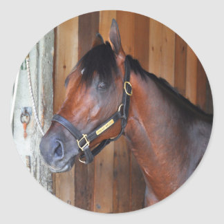 Palace Malice by Curlin Classic Round Sticker
