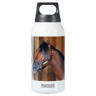 Palace Malice by Curlin Insulated Water Bottle