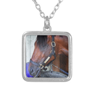 Palace Malice by Curlin Silver Plated Necklace