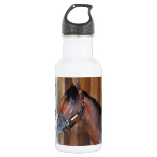 Palace Malice by Curlin Stainless Steel Water Bottle