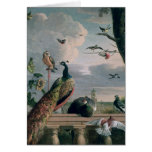 Palace of Amsterdam with Exotic Birds Card