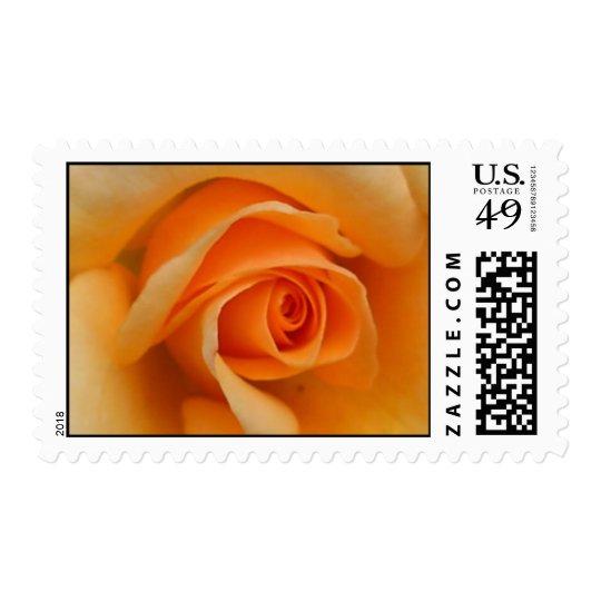 Palace Rose Postage