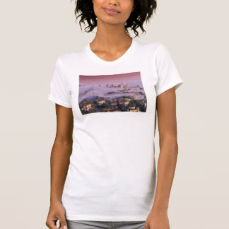 palaces in the naked dist tee shirt