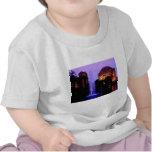 Palacio de bellas arte camiseta