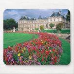Palacio de Luxemburgo en París, Francia Alfombrillas De Ratón
