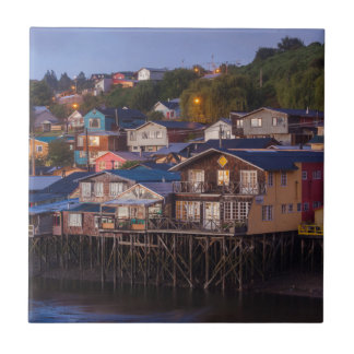Palafito stilt houses, elevated view ceramic tile