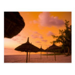 Palapa style beach huts at sunrise, Belle Mare 2 Post Card