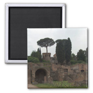 Palatine Hill in Rome, Italy 2 Inch Square Magnet