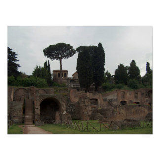 Palatine Hill in Rome, Italy Poster