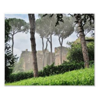 Palatine Hill Through the Trees, Rome Photo Print