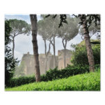 Palatine Hill Through the Trees, Rome Photographic Print