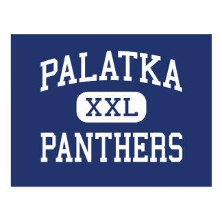 Palatka - Panthers - High School - Palatka Florida Postcard