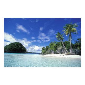 Palau, islas de la roca, isla de la luna de miel,  cojinete