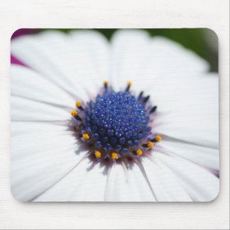 Pale Blue Daisy Mouse Pad