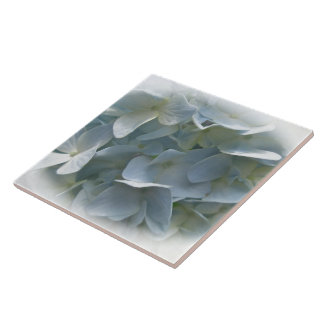 Pale Blue Hydrangea Flowers Ceramic Tile