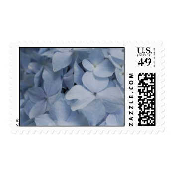 Pale Blue Hydrangea Postage by PerennialGardens at Zazzle