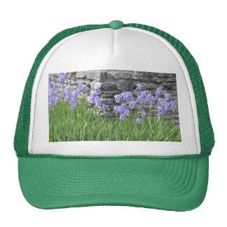 Pale Blue Purple Iris Flowers by a Limestone Wall Trucker Hat