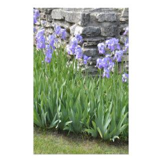 Pale Blue Purple Iris Flowers by a Limestone Wall Stationery Design