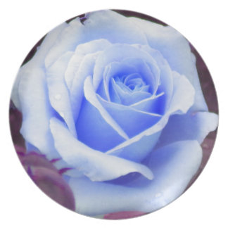Pale Blue Rose Collector Plate