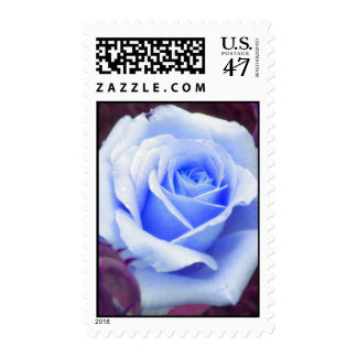Pale Blue Rose Postage
