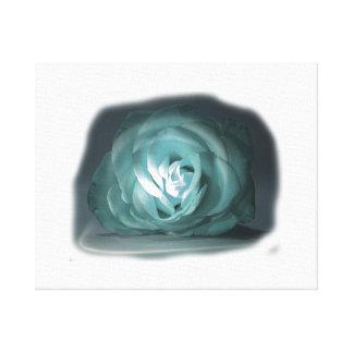 Pale Blue Rose Spolighted Cutout Canvas Print