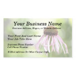 Pale Coneflower - Echinacea Pallida Business Card Template
