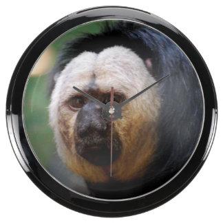 Pale Faced Saki Monkey Aquarium Clock