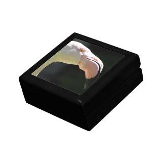 Pale Flamingos  Gift Box