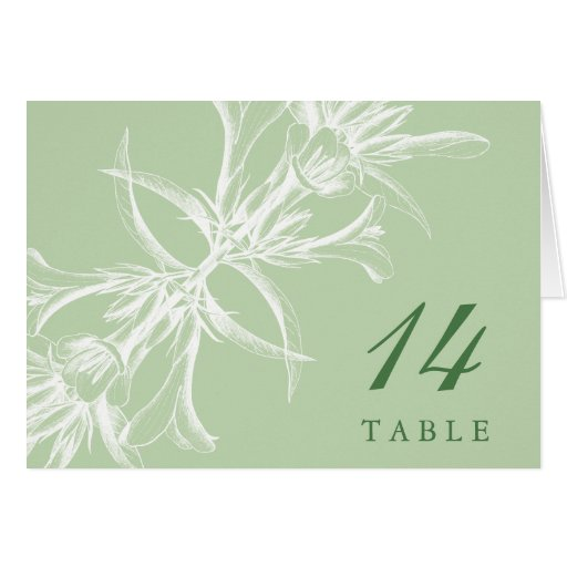 Pale Mint Floral Table Place Cards