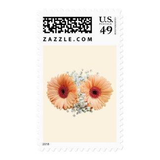 Pale Orange Gerbera Daisies and Stephanotis Postage