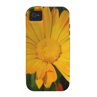 Pale Orange Marigold Flower With Garden Background Case-Mate iPhone 4 Covers