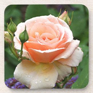 Pale orange rose & raindrops drink coaster