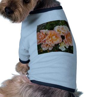 Pale orange roses in bloom in garden doggie t shirt