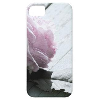 Pale Pastel Long Stem Rose on Deck iPhone SE/5/5s Case