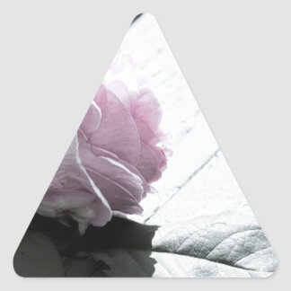 Pale Pastel Long Stem Rose on Deck Triangle Sticker