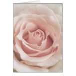 Pale Peach Antique Rose Background Customized Stationery Note Card