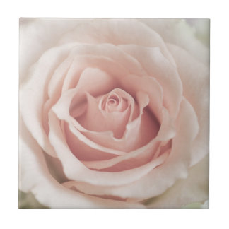 Pale Peach Antique Rose Background Customized Ceramic Tile