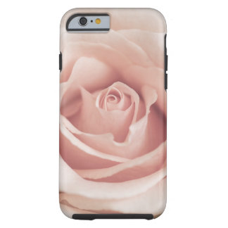 Pale Peach Antique Rose Background Customized Tough iPhone 6 Case