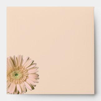 Pale Peach Gerber Daisy Wedding Envelope