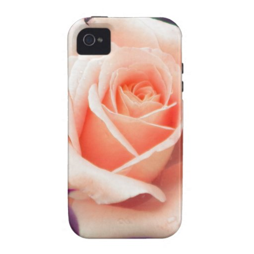 Pale Peach Rose iPhone 4 Case