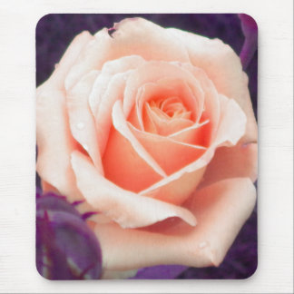 Pale Peach Rose Mouse pad