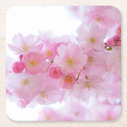 Pale Pink Cherry Blossoms Square Paper Coaster