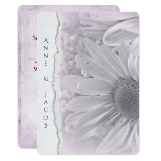 pale pink daisy macro on torn edge paper card