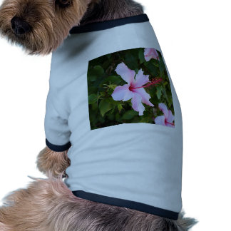 Pale pink hibiscus flower in bloom dog t shirt