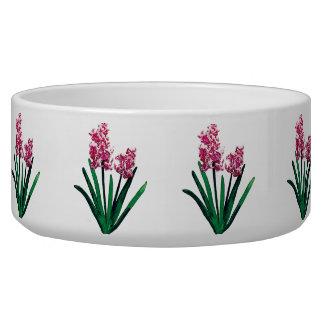 Pale Pink Hyacinths Bowl